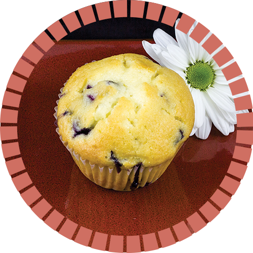 blueberry_muffin_500x500_circle