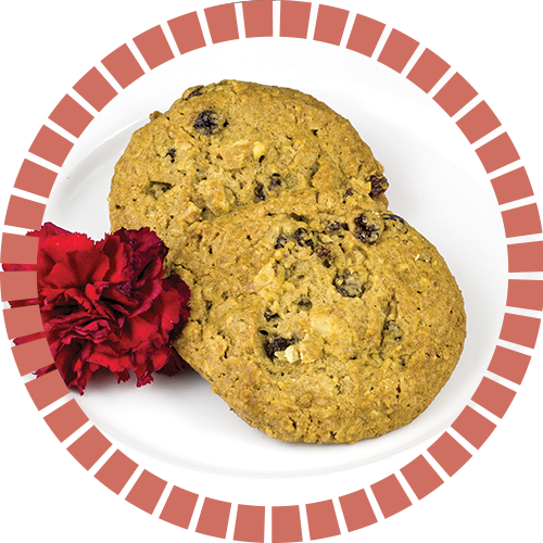 oatmeal_raisin_cookie_500x500_circle